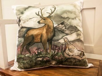 Stag & Hen Do Cushion
