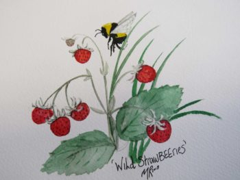 StrawBEEries Original Watercolour